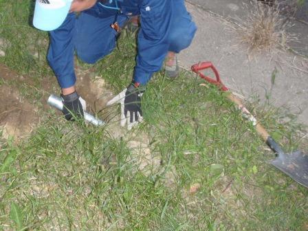 ネッツ-捕獲罠による哺乳類調査モールトラップ