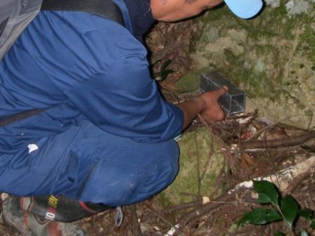 ネッツ-捕獲罠による哺乳類調査シャーマントラップ