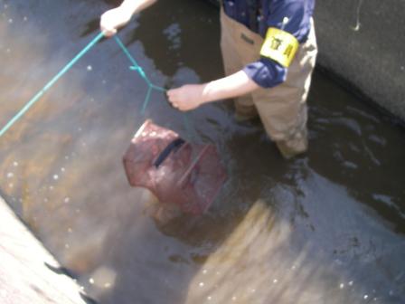 有限会社ネッツ-業務紹介-魚類調査-捕獲罠による調査カゴ網