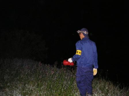 有限会社ネッツ-業務紹介-爬虫類・両生類調査-夜間調査(買える類の鳴き声確認)